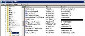 SBS2011 - DNS  MaxCache TTL