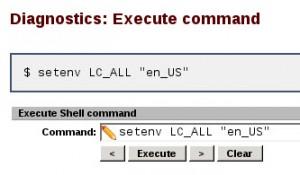 pfSense Sarg LC_ALL Command