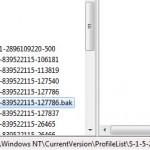 Windows Profilreparatur Registry