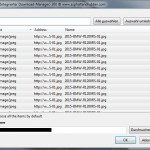 Flashgot Gallerie Downloaden